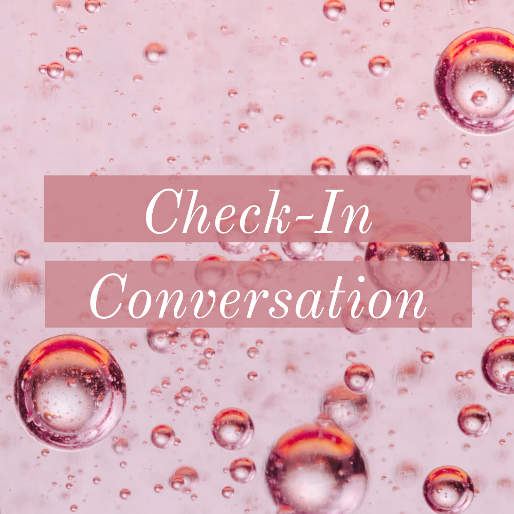 Check-In Conversation 2